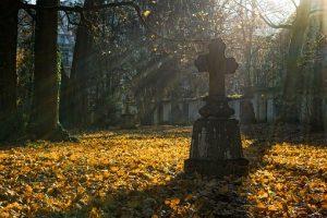autumn-2182008__340