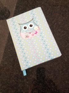 Morellis notebook