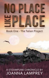 No Place like Place_kindle