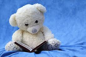 Book and Teddy