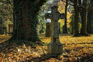 autumn-2182010__340