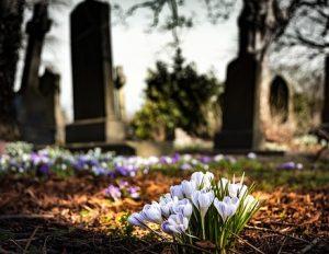 graveyard-1417871__340