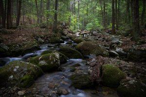 hiking-1840234__340