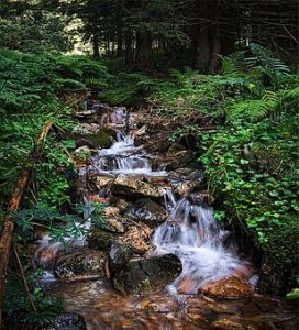 stream-2690977__340